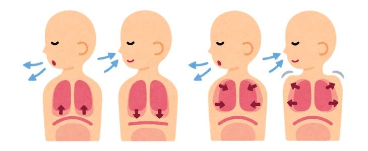 腹式呼吸はもう古い!?あなたはどこで呼吸していますか?